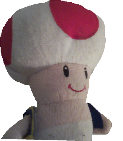 File:Toad PNG.png