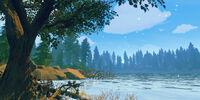 Jonesy Lake (Shoshone National Forest)