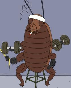 StrongestCockroach