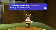 Mariotransformbee