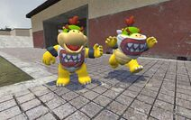 Two Bowser Jrs.