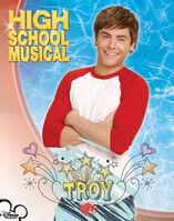Troy-troy-bolton-6179300-356-452