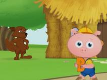 Pig B
