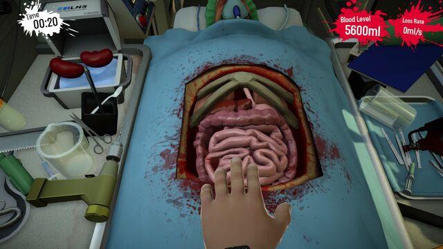 File:Kidney Middle Ambulance.jpg