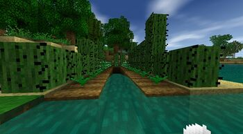 Cacti fence farm