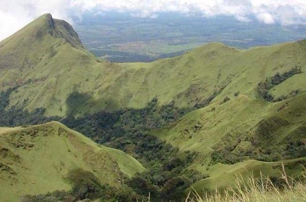 File:Grass hills.jpg