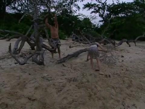 File:Survivor.S07E02.DVDRip.x264 020.jpg