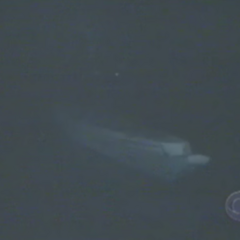 Chuay Gahn's boat floats away in the middle of the night