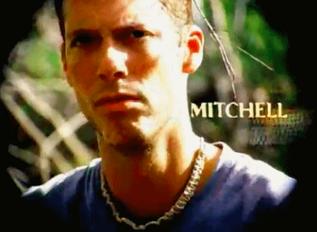 File:Mitchell image.png