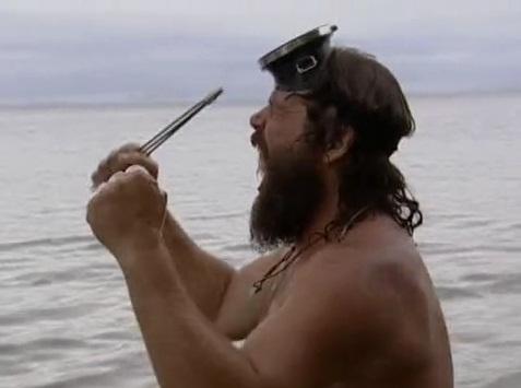 File:Survivor.S07E02.DVDRip.x264 081.jpg