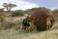Rock n roll samburu africa