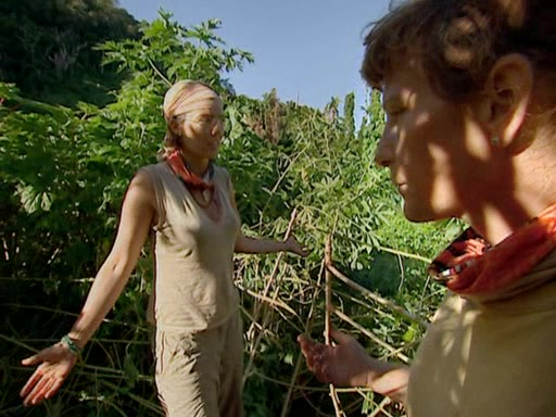 File:Survivor.Vanuatu.s09e11.Surprise.and.Surprise.Again.DVDrip 287.jpg