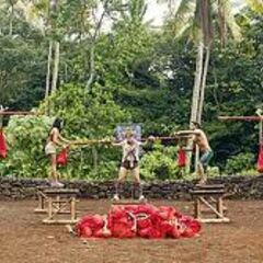 Savaii competes for immunity.
