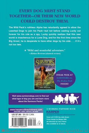 File:DF.backcover2.png