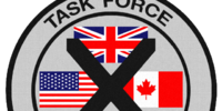 Task Force 100
