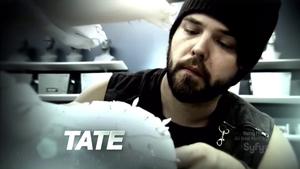 S01op-Tate