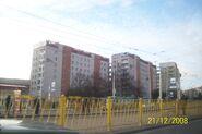 Grudzień 2008 (194)