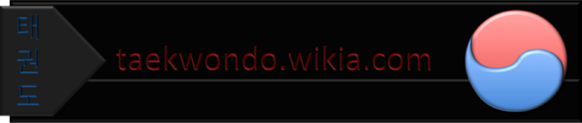 File:Tkd wikia banner2.png