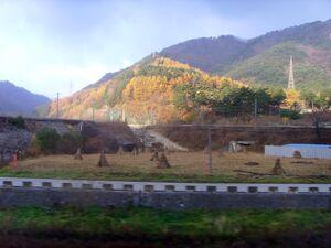 Korail Taebaek Triangle Line2