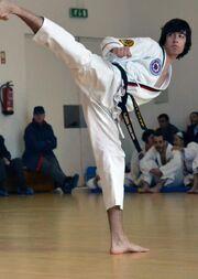 Ata taekwondo2