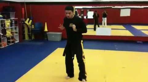 Tae Kwon Do - Green Belt Form - Hanguk