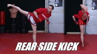 Taekwondo Side Kick Tutorial for MMA & Kickboxing 60fps