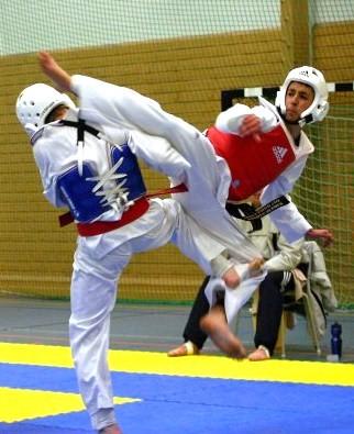 File:WTF Taekwondo sparring.jpg