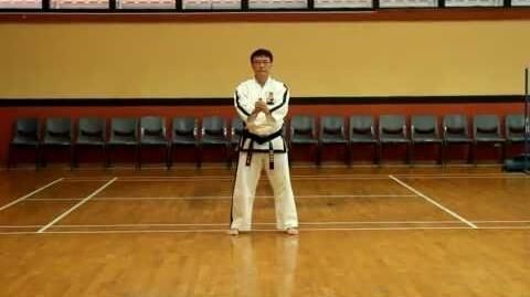 Knife Pattern - aka Hwarang Silla Knife Hyung-0