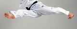 Taekwondo Kicking