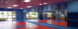 Taekwondo Schools