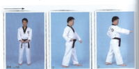 The Book of Teaching & Learning Taekwondo