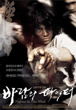 Fighter in the Wind movie poster (1)