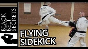 Tae Kwon-Do Flying Side Kick from Choong Moo & How to do it
