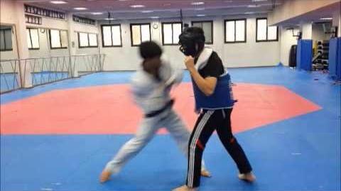 실전 태권도 Taekwondo - Lee Dong Hee