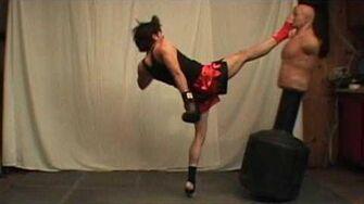 Taekwondo Front Push Kick Tutorial (Kwonkicker)