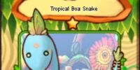 Tropical Boa Snake (card)