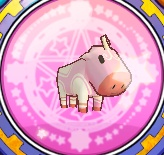 File:White Pink Baby Calf.jpg