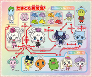 Tamagotchi! Miracle Friends Relationship Chart