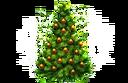 Gift icon Christmas Tree