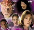 Whatever Happened to Sarah Jane? (novelisation)