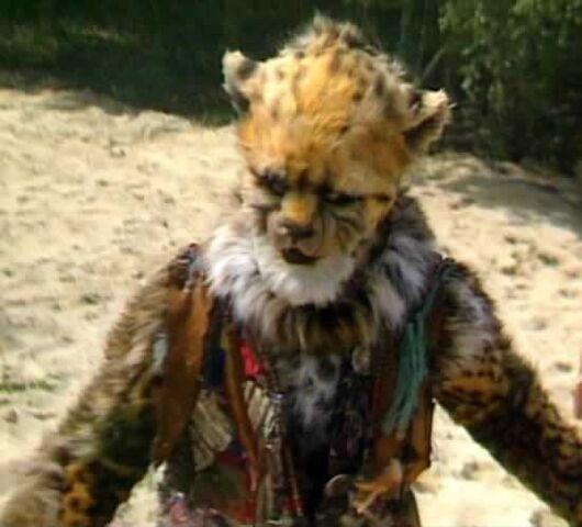 File:Cheetah per.jpg
