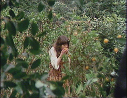 File:Sarah Jane Smith picking oranges.jpg