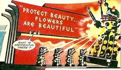 Protect Beauty