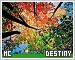 Destiny-etc