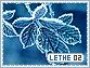 Lethe-elements2