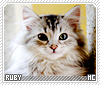 Ruby-animalia