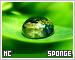 Sponge-etc