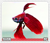 Niina-animalia