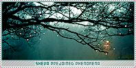 Sheva-phenomena b