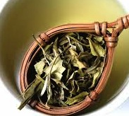 File:White tea leaves.jpeg